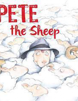 Pete the Sheep4